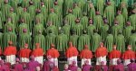 synod